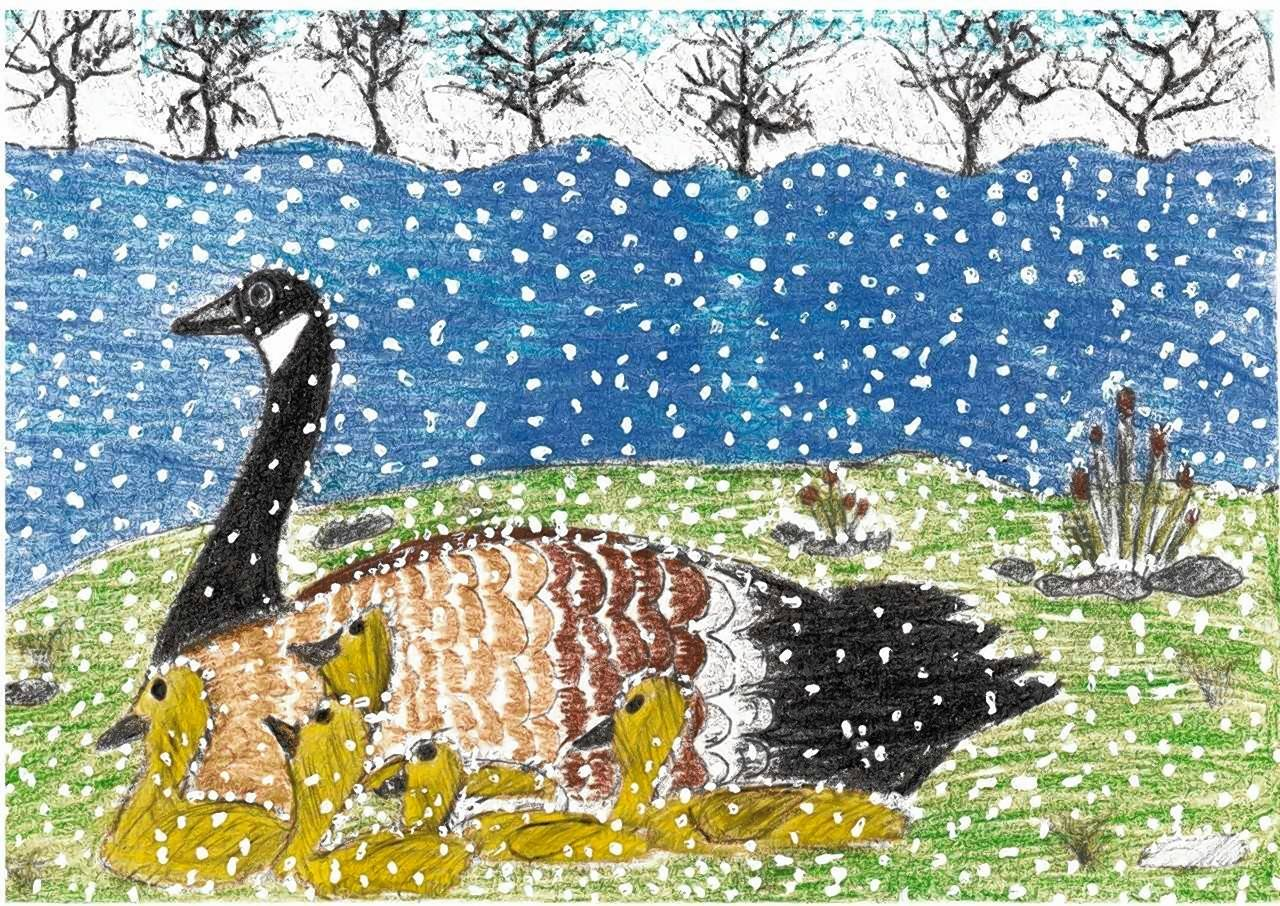 Sixth-grader Midhila Thomascame in second place in the Winter Card Contest hosted by District 62 with this drawing of a goose.